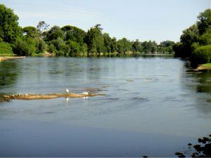 Vue d'ensemble d'une frayère potentielle de l'esturgeon européen à Pessac-sur-Dordogne en août 2012